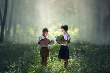 livres d'occasion pas cher pour enfants et adultes